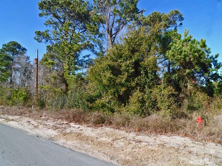 535 Manassas Drive, Wilmington, NC 28409 (MLS #30498585) :: Century 21 Sweyer & Associates