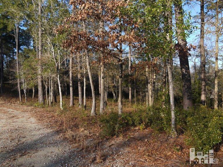 102 Woodington Circle, Sneads Ferry, NC 28445 (MLS #30501659) :: Century 21 Sweyer & Associates