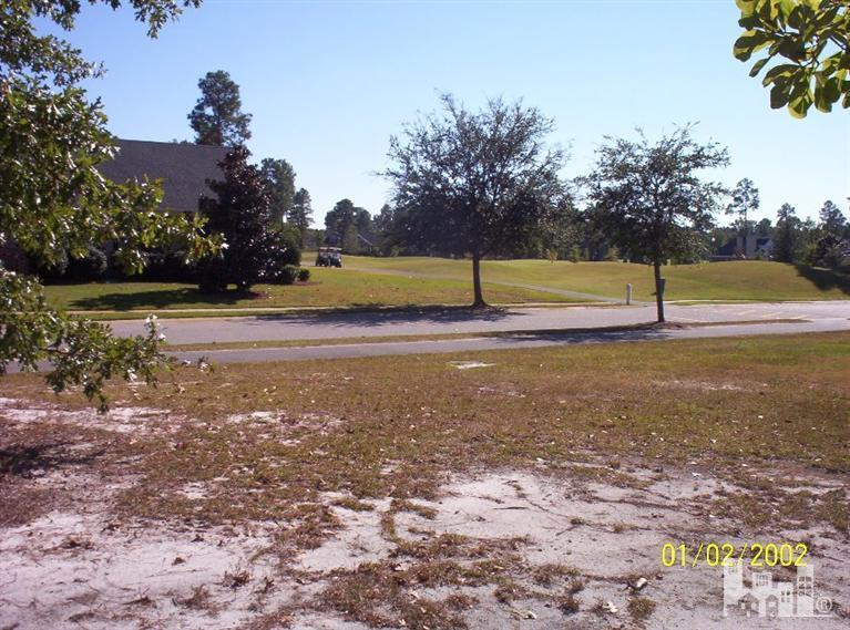 1302 Grandiflora Drive, Leland, NC 28451 (MLS #30513836) :: Century 21 Sweyer & Associates