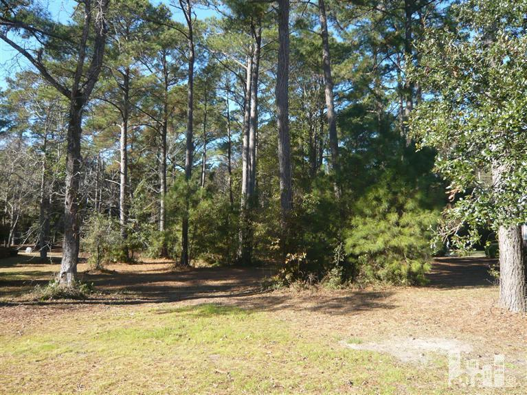 1168 Arboretum Drive, Wilmington, NC 28405 (MLS #30518376) :: Century 21 Sweyer & Associates