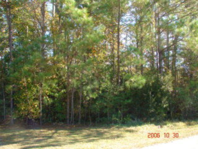 303 Crosswoods Drive, Holly Ridge, NC 28445 (MLS #40202273) :: Century 21 Sweyer & Associates