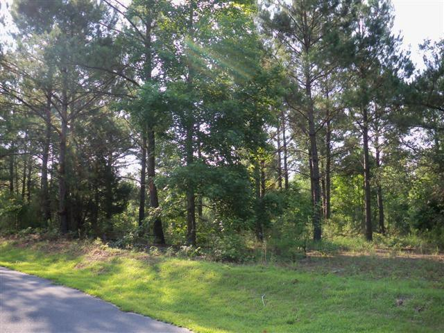 Lt 6 Holly Hill Road, Hampstead, NC 28443 (MLS #40203671) :: The Keith Beatty Team
