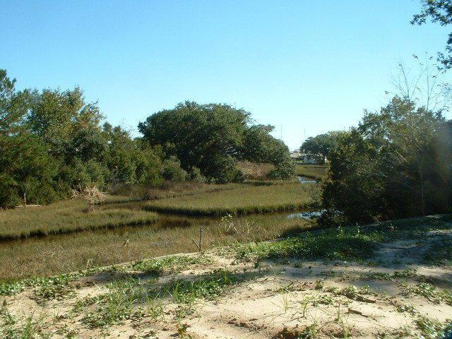 193 Swan Point Road, Sneads Ferry, NC 28460 (MLS #40207084) :: Century 21 Sweyer & Associates