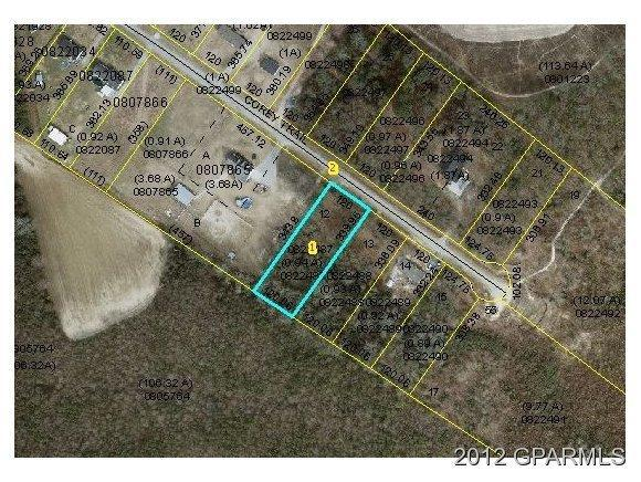 358 Corey Trail, Snow Hill, NC 28580 (MLS #50105316) :: Century 21 Sweyer & Associates