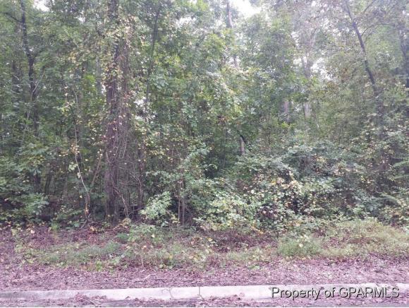 Lot 5 Robinwood Drive, Kinston, NC 28504 (MLS #50121921) :: Century 21 Sweyer & Associates
