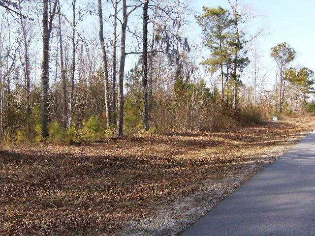 Lot B Long Point Road, Chocowinity, NC 27817 (MLS #70029707) :: Century 21 Sweyer & Associates