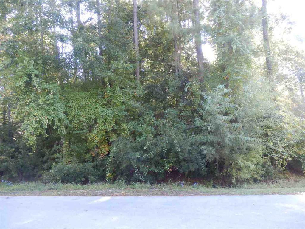 1010 Beech Tree Road, Jacksonville, NC 28546 (MLS #80171572) :: Century 21 Sweyer & Associates