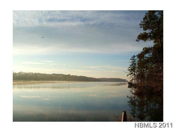 454 Baird Point Road, Grantsboro, NC 28529 (MLS #90081197) :: Century 21 Sweyer & Associates