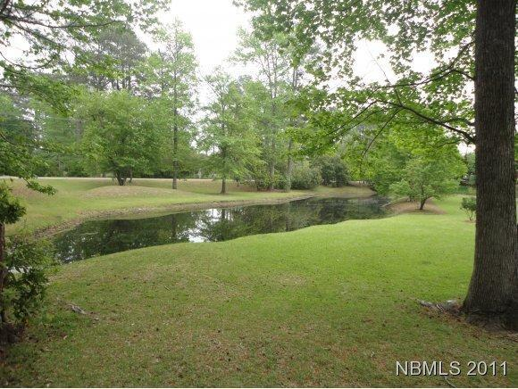 125 Hawks Pond Road, New Bern, NC 28562 (MLS #90082990) :: The Oceanaire Realty