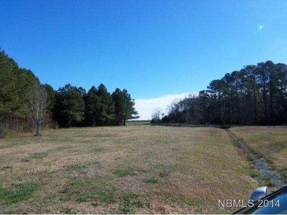 179 Trent Road, Oriental, NC 28571 (MLS #90092874) :: Century 21 Sweyer & Associates