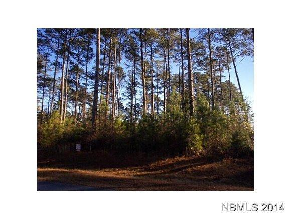 190 Smith Creek Road, Oriental, NC 28571 (MLS #90095935) :: Century 21 Sweyer & Associates