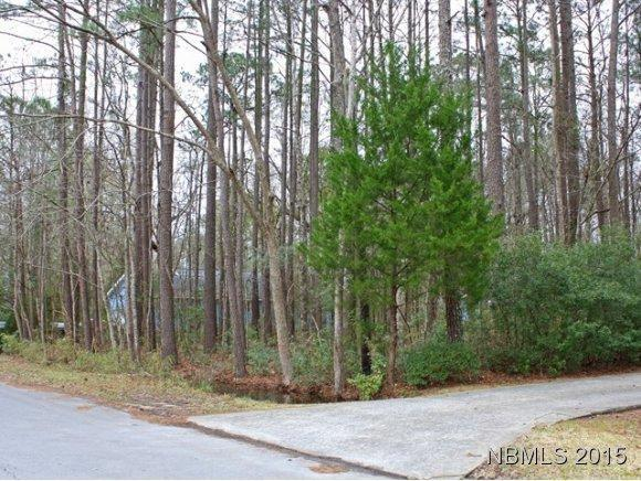 0 Pineview Drive, Oriental, NC 28571 (MLS #90097792) :: Century 21 Sweyer & Associates