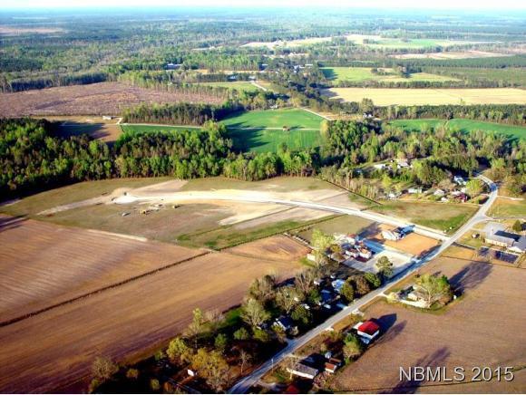 317 Summerfield Road, Ernul, NC 28527 (MLS #90099815) :: Century 21 Sweyer & Associates
