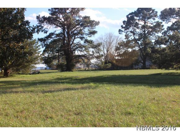 5206 Albemarle Drive, Oriental, NC 28571 (MLS #90103060) :: Century 21 Sweyer & Associates
