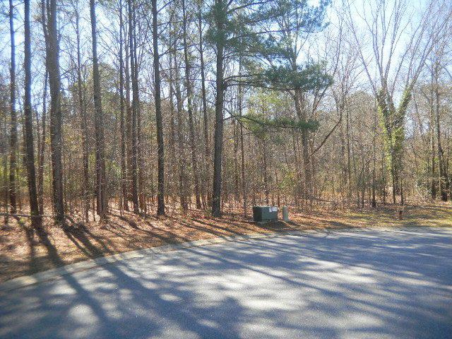 0 S Old Carriage Road, Rocky Mount, NC 27804 (MLS #95058932) :: Thirty 4 North Properties Group