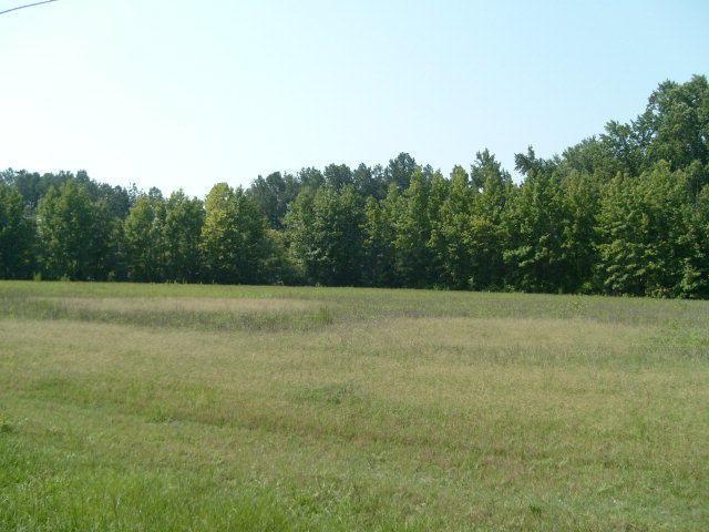 0 Nicodemus Mile Road - Photo 1