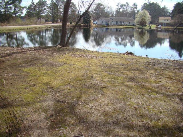 0000 Liza Lane, Laurinburg, NC 28352 (MLS #96036898) :: Courtney Carter Homes