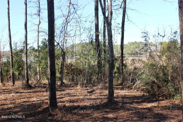 206 Wild Oak Drive, Swansboro, NC 28584 (MLS #100003214) :: Century 21 Sweyer & Associates