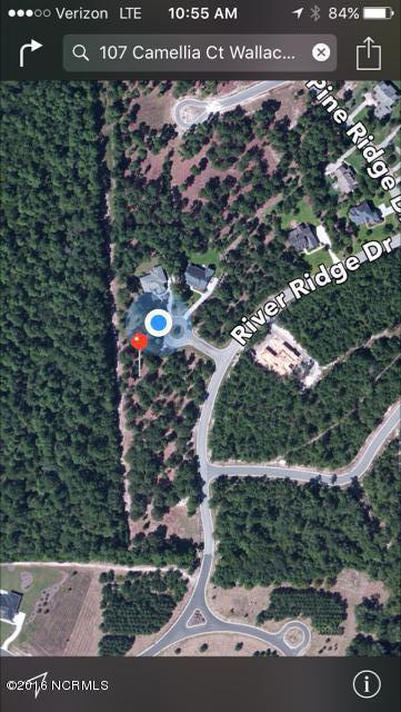 107 Camellia Court, Wallace, NC 28466 (MLS #100006187) :: Century 21 Sweyer & Associates