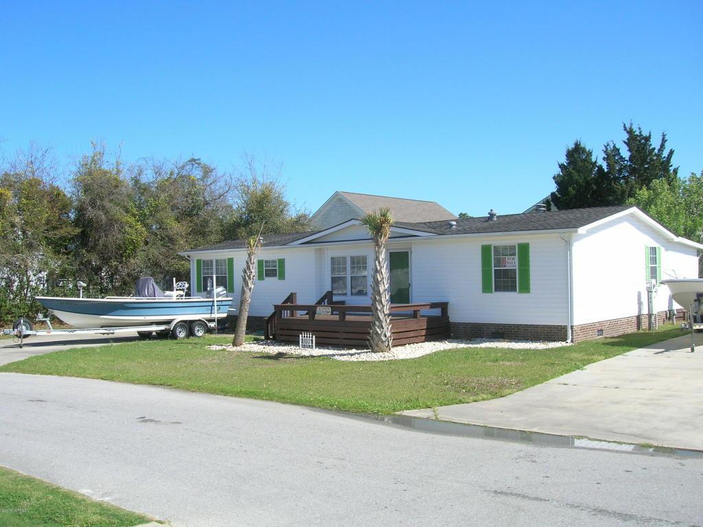 101 Blue Goose Lane, Newport, NC 28570 (MLS #100007232) :: Century 21 Sweyer & Associates