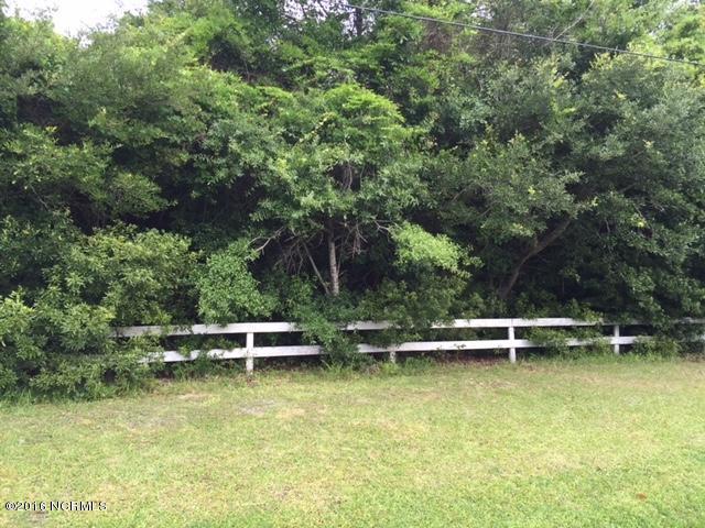 150 Water Oak Drive, Newport, NC 28570 (MLS #100018827) :: Century 21 Sweyer & Associates