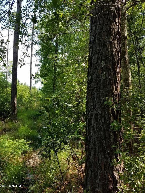 0 Upperneck Road, Bayboro, NC 28515 (MLS #100020853) :: Century 21 Sweyer & Associates