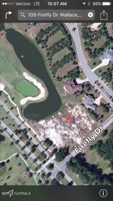 109 Firefly Drive, Wallace, NC 28466 (MLS #100025258) :: Century 21 Sweyer & Associates