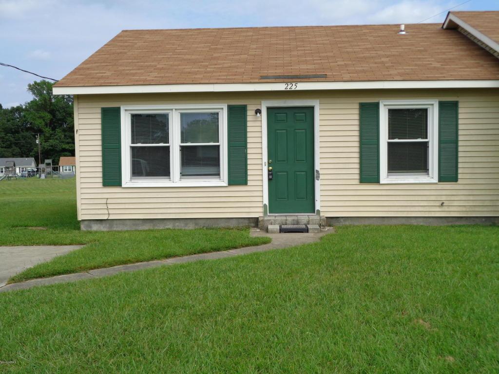 225 Appaloosa Drive, Jacksonville, NC 28540 (MLS #100027722) :: Century 21 Sweyer & Associates