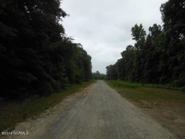 311 Corey Trail, Snow Hill, NC 28580 (MLS #100030254) :: Century 21 Sweyer & Associates
