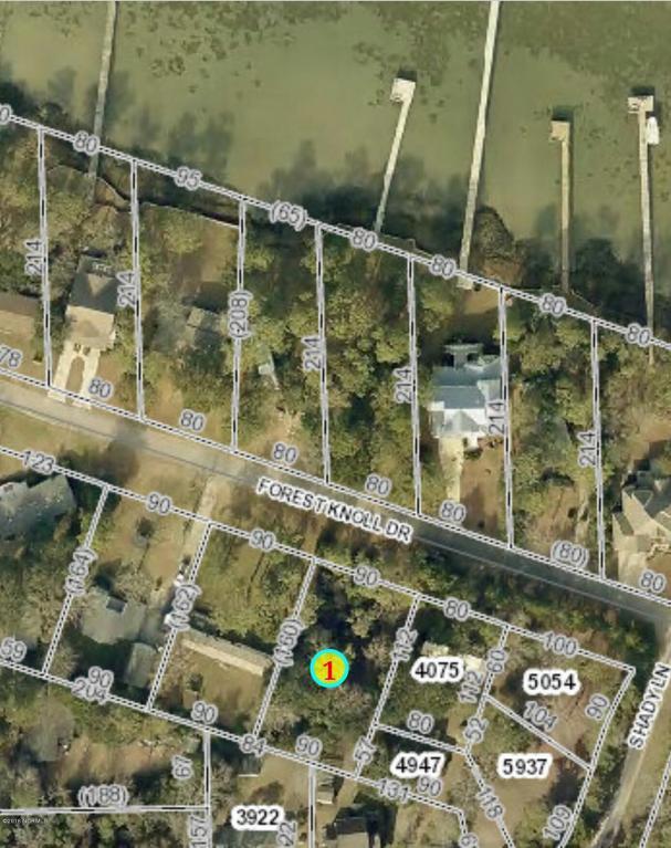 205 Forest Knoll Drive, Atlantic Beach, NC 28512 (MLS #100030382) :: Century 21 Sweyer & Associates