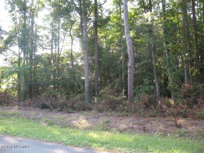 220 Victory Gardens Drive, Wilmington, NC 28409 (MLS #100031488) :: Century 21 Sweyer & Associates
