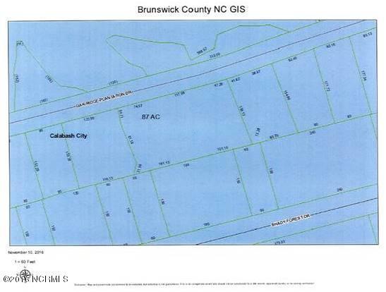 L-46a Oak Ridge Plantation Drive, Calabash, NC 28467 (MLS #100036678) :: RE/MAX Essential