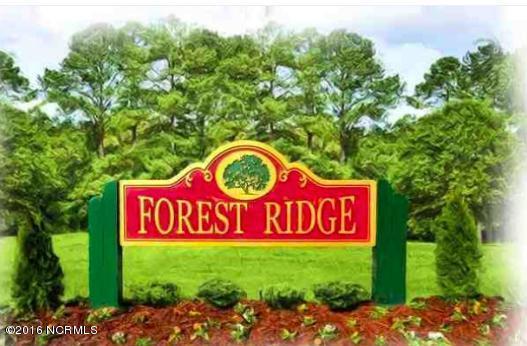 142 Forest Ridge Trail, Stella, NC 28582 (MLS #100037189) :: Century 21 Sweyer & Associates