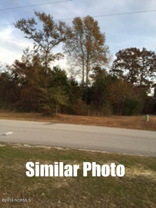 124 Beagle Drive, Hubert, NC 28539 (MLS #100040234) :: The Cheek Team