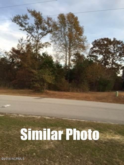 126 Beagle Drive, Hubert, NC 28539 (MLS #100040238) :: The Cheek Team