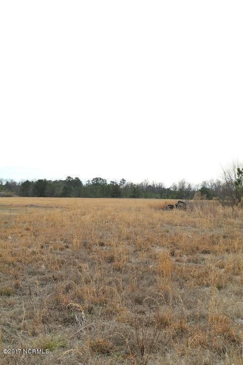 232 Mewborn Drive, Beulaville, NC 28518 (MLS #100044011) :: Century 21 Sweyer & Associates