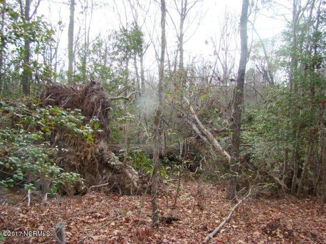 Lot 24 Evergreen Lane, Blounts Creek, NC 27814 (MLS #100048485) :: Chesson Real Estate Group