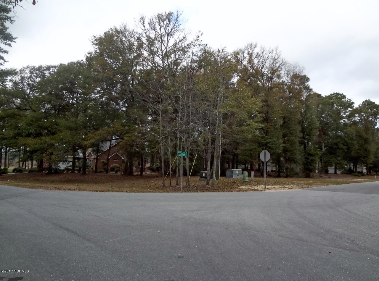 Lot 1 Lakeshore Drive - Photo 1