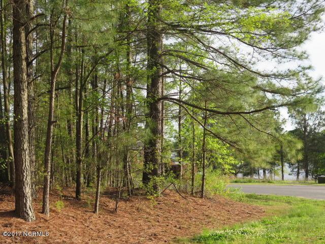 20 Deer Track Drive, Clinton, NC 28328 (MLS #100057722) :: The Keith Beatty Team