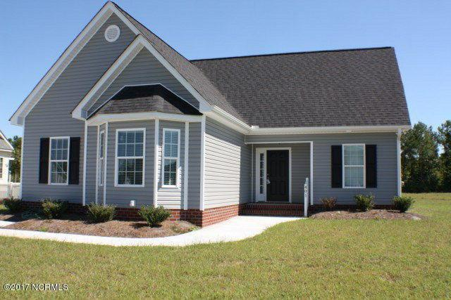 221 Asheberne Drive, Washington, NC 27889 (MLS #100075254) :: Century 21 Sweyer & Associates