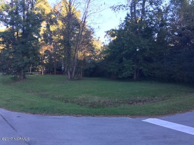 113 Channel Run Drive, New Bern, NC 28562 (MLS #100086621) :: Century 21 Sweyer & Associates