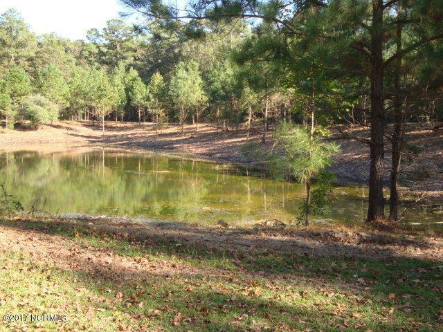 Lot 1 Cypress Lake Circle - Photo 1