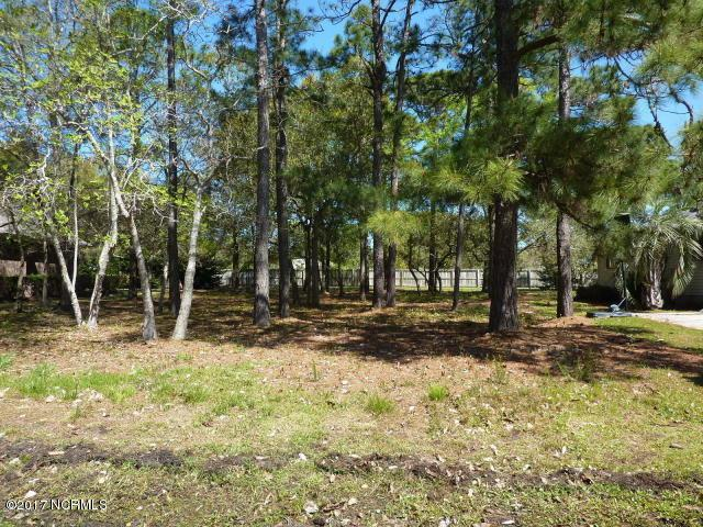 1714 Lake Tree Drive SW, Ocean Isle Beach, NC 28469 (MLS #100093589) :: Stancill Realty Group