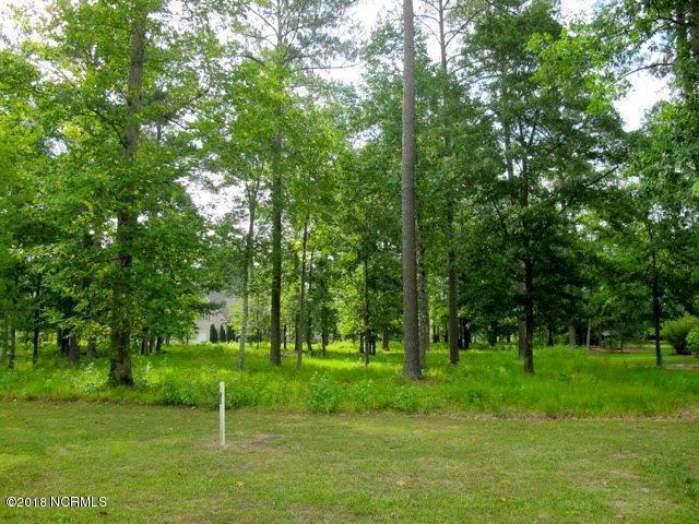 Lot 147 Potomac Drive - Photo 1