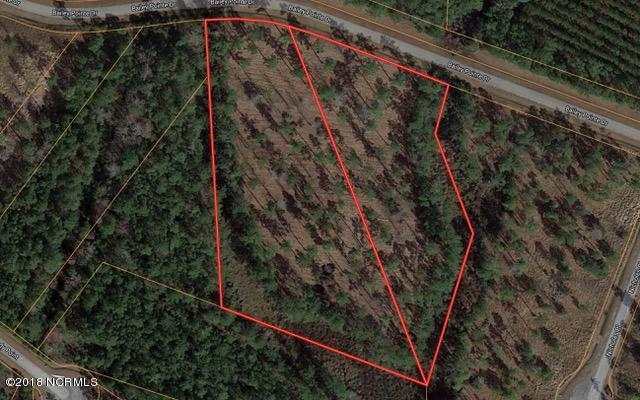 Lots 32/33 Bailey Pointe Drive, Belhaven, NC 27810 (MLS #100102559) :: RE/MAX Essential