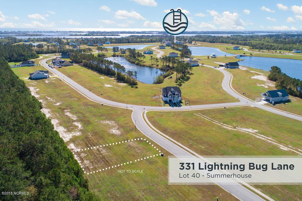 331 Lightning Bug Lane - Photo 1