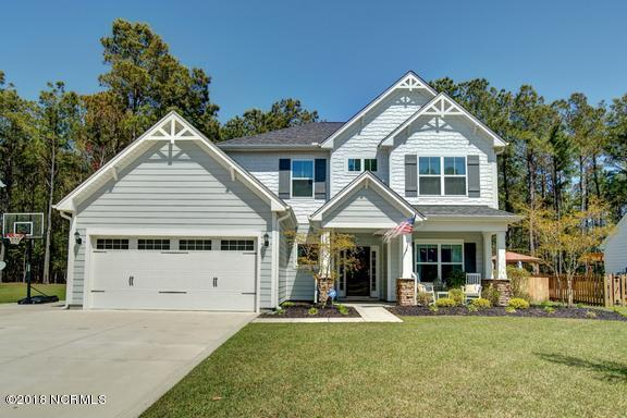 430 Canvasback Lane, Sneads Ferry, NC 28460 (MLS #100111805) :: RE/MAX Elite Realty Group