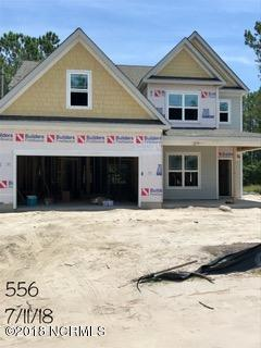 110 E Goldeneye Court, Sneads Ferry, NC 28460 (MLS #100118512) :: RE/MAX Essential