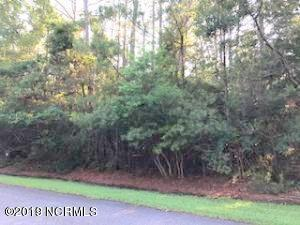 89 Marsh Grass Court, Southport, NC 28461 (MLS #100124821) :: Courtney Carter Homes