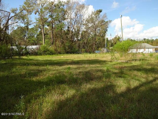 2320 Rockhill Road, Castle Hayne, NC 28429 (MLS #100133933) :: RE/MAX Essential